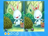 Play Find Differences Bunny